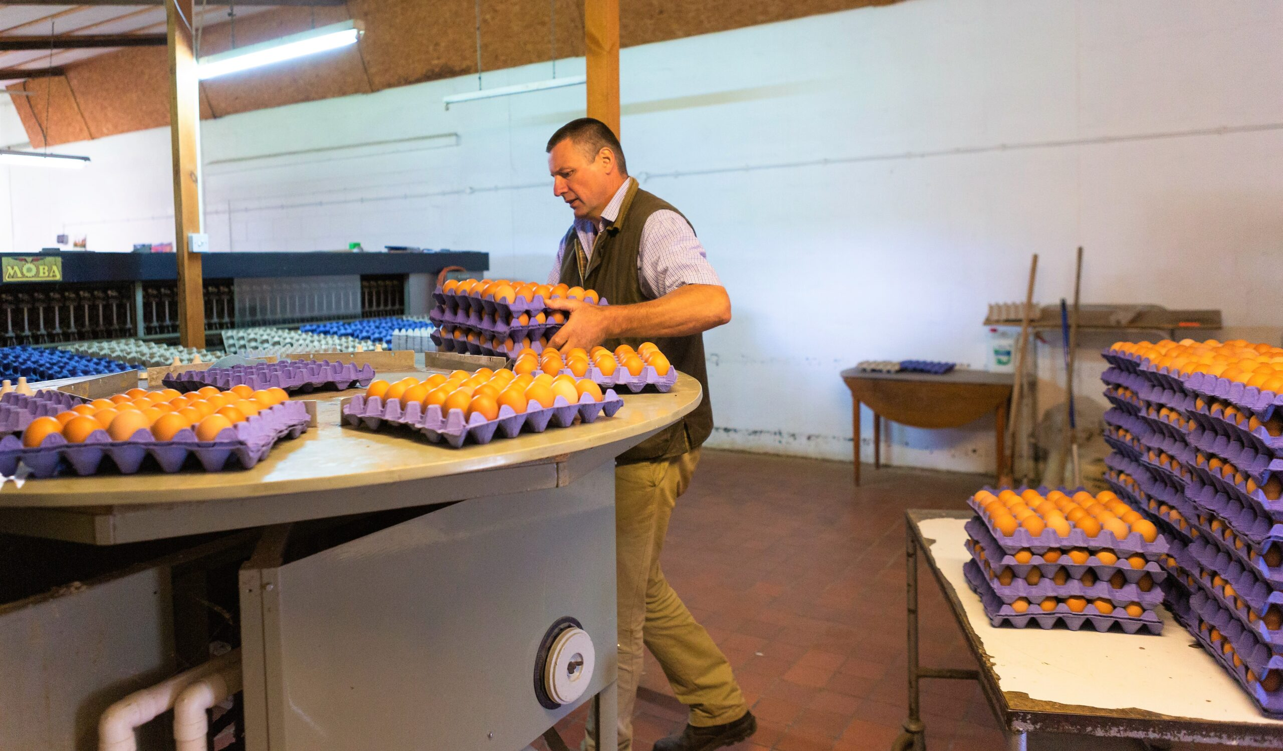 Scramble for eggs during lockdown led to sales surge for Welsh farmer