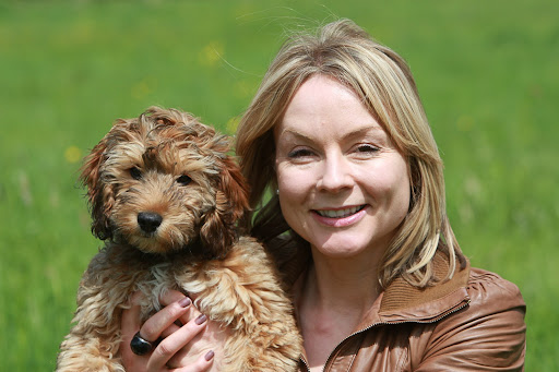 Most dog owners would pull a sickie to care for their pet, new research highlights
